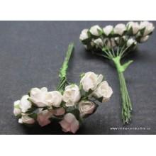 Pomo flor de color blanco,...