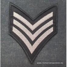 Motivo bordado tipo militar...