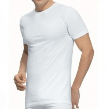Camiseta abanderado manga...